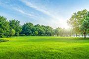 Landwirtschaftsboden Grünfläche Grundstück