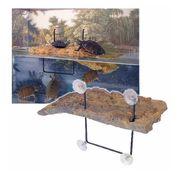 Aquarium Terrarium Zubehör Set Wasserschildkröten