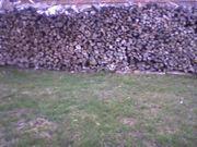 Brennholz Fichte Forche