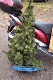 Weihnachtsbaum fur 10 euro