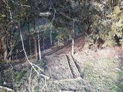 Eingezäuntes Freizeit Grundstück im Dornröschenschlaf