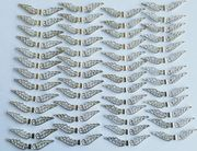 52 Große Flügel Spacer Perlen