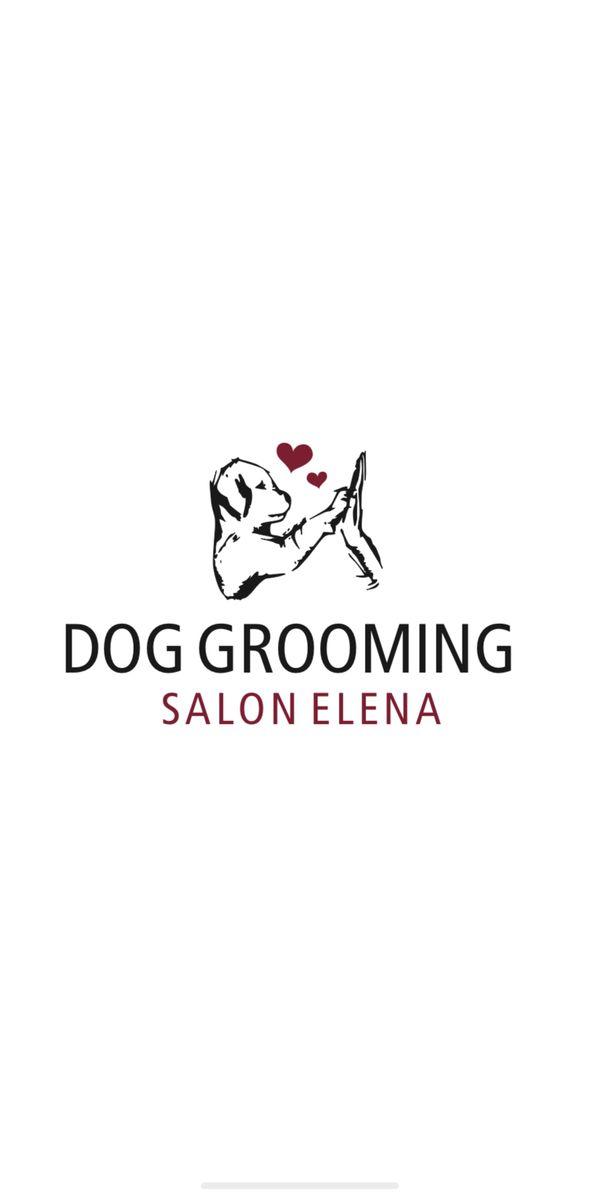 Hundepflege für Ihren Vierbeiner