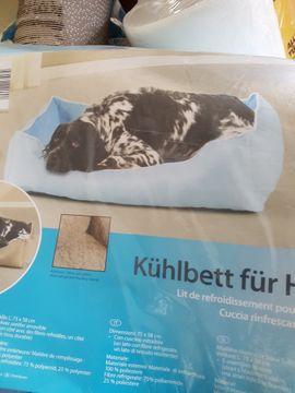 Zubehör für Haustiere - Hundebett NEU Kühlbett für Haustiere