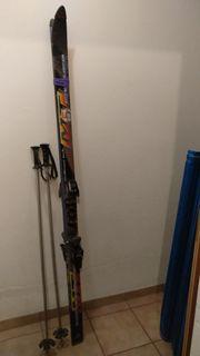 Skier Fischer Plasma Edge MT