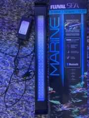 Fluval Marine LED
