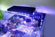 Meerwasser Aquarium zetlight led 1201