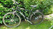 Herren-Trekkingrad Triumph 530 24 guter
