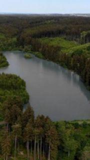 Waldsee zur Pacht von Privat
