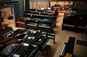 Vertrauensvoller und Seriöser Klavier und