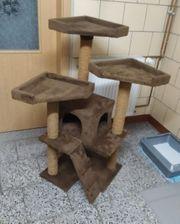 Katzen Kratzbaum