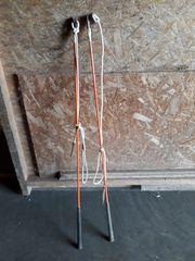 Original Parelli Bodenarbeit carrot stick