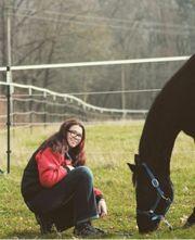 suche Pferd als Reitbeteiligung zur