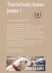 Liebevolle und hundeerfahrene Pflegestellen gesucht