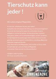 Liebevolle hundeerfahrene Pflegestellen gesucht