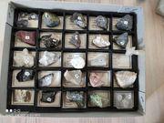 Mineraliensammlung mit Beschriftung