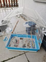 schöner Vogel Käfig