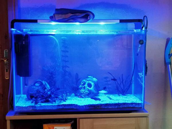 Super fish home 110 zu