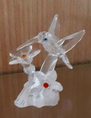Swarovski Kolibri an Blüten Vitrinenfigur