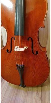 Meister Violoncello mit Zertifikat zum
