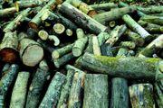 Verkaufe Brennholz in Meterstücken