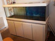 meerwasser aquarium süsswasser
