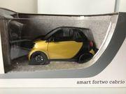 Modellauto 1 18 Smart Fortwo