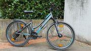 Fahrrad von Triumph 26 Zoll