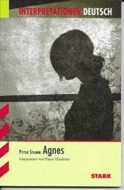 Lektürehilfe Peter Stamm - Agnes
