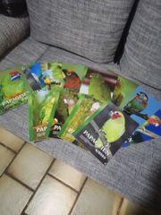 Zeitschrift Papageien Arndt Verlag