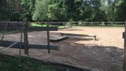 Offenstallplatz für Pony