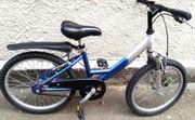20 Zoll Pegasus Kinder Fahrrad
