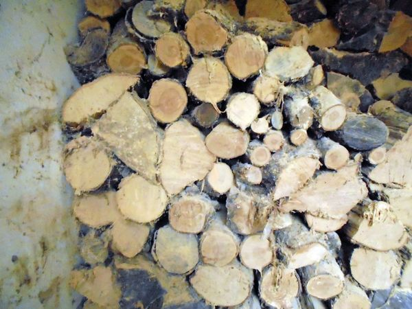 Brennholz Kaminholz in verschiedenen Längen