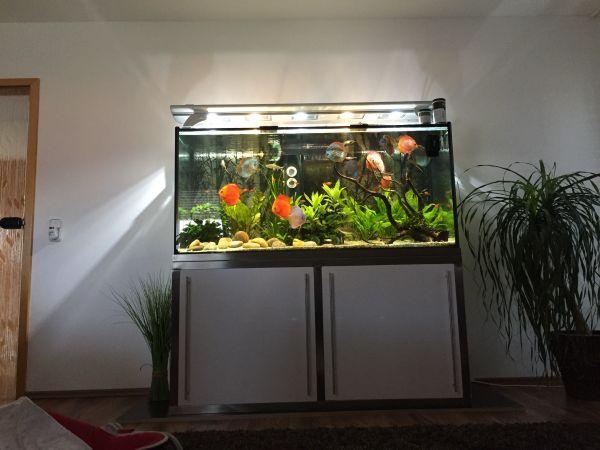Aquarium mobel gebraucht kaufen nur 3 st bis 75 g nstiger for Aquarium gebraucht