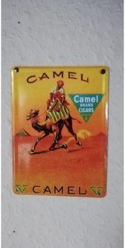 Blechschild Camel