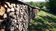 Sehr trockenes Brennholz Kaminholz 1RM