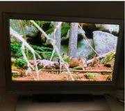 Fernseher Plasma Flachbildfernseher Panasonic TH-37PV7F