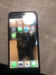 iPhone 8 Kauf oder Tausch