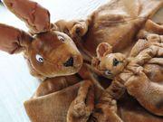Faschingskostüm Känguruh Größe ca 104