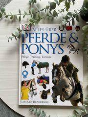 Alles über Pferde Ponys