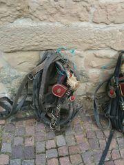 Kummetgeschirr 2 Spänner Pferde