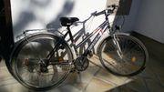 Fahrrad Damen Fischer