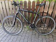 BULLS Trekking- Crossbike 29 TOP