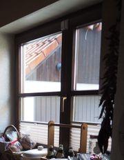 Fenster Holz braun doppelflüglig Doppelverglasung