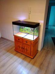 Aquarium 112 l