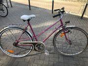 Damen Rad EXCLUSIV 28 Zoll