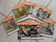Zeitschriften Vögel