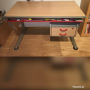 Moll Booster Schreibtisch Haushalt Möbel Gebraucht Und Neu
