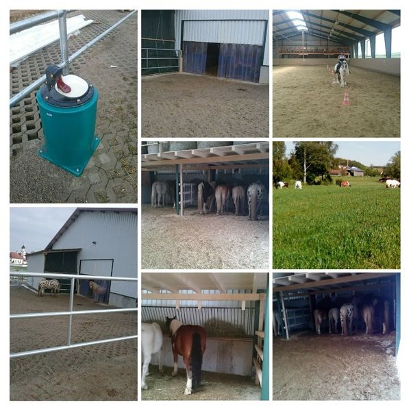 Selbstversorger Offenstall für 2 Pferde