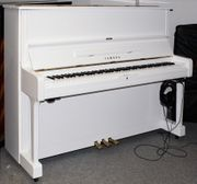 Klavier Yamaha U1 SILENT weiß